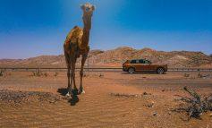 Rolls-Royce of Diamonds : Cullinan driven in Dubai